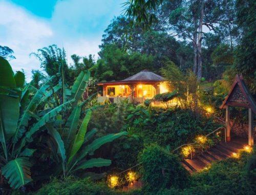 wirkung mudra ayahuasca pflanzenmedizin retreat center finden