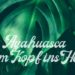 Ayahuasca erster Ayahuasca-Zeremonie Blätter