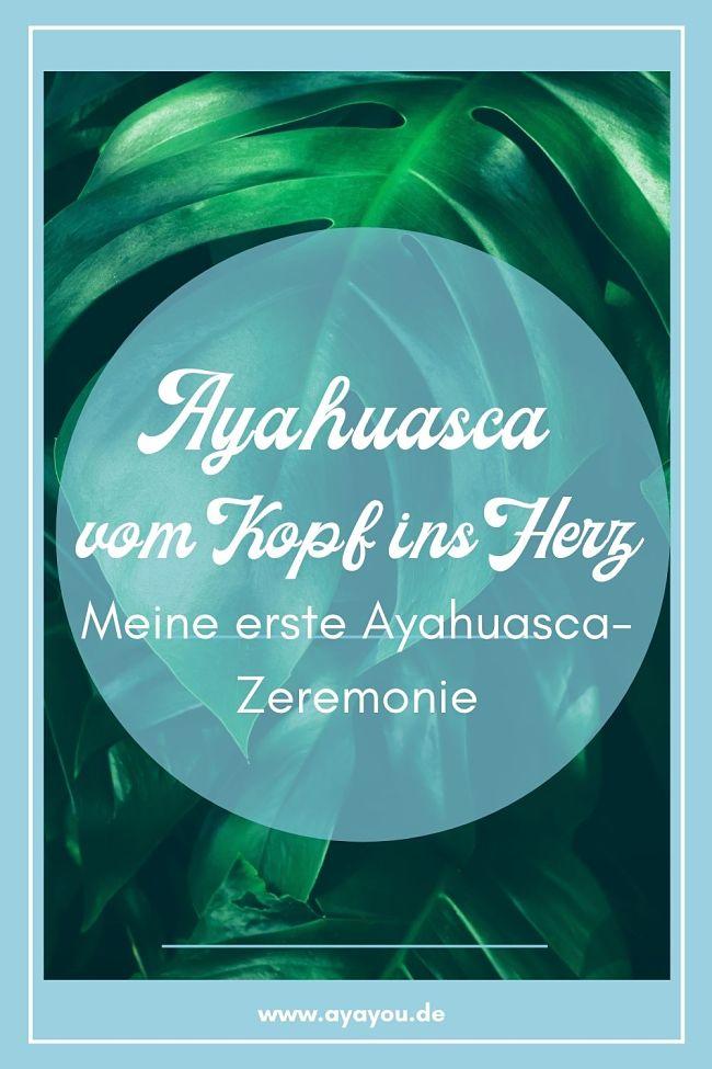 Ayahuasca erste Zeremonie Erfahrungen_Blatt
