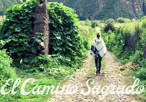 Ayahuasca Retreat El Camino Sagrado Peru