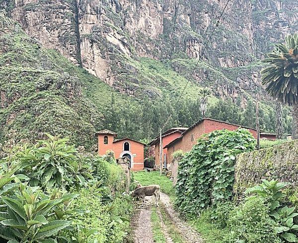 El Camino Sagrado Ayahuasca-Retreat Erfahrungen Peru Sacred Valley