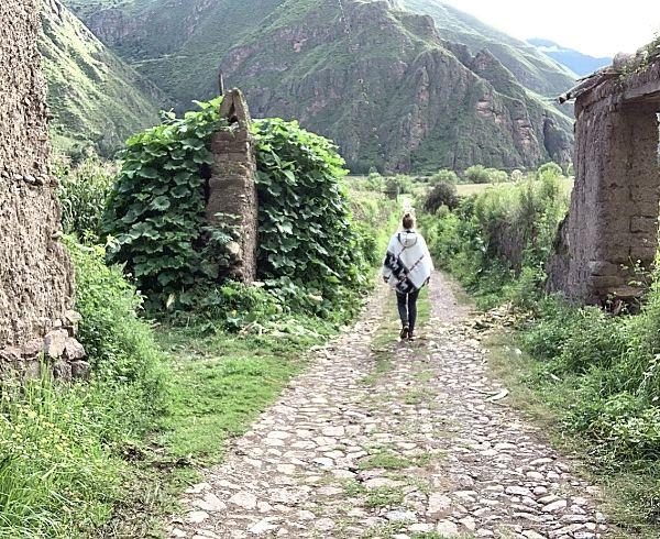 El Camino Sagrado Ayahuasca-Retreat Erfahrungen Peru 8